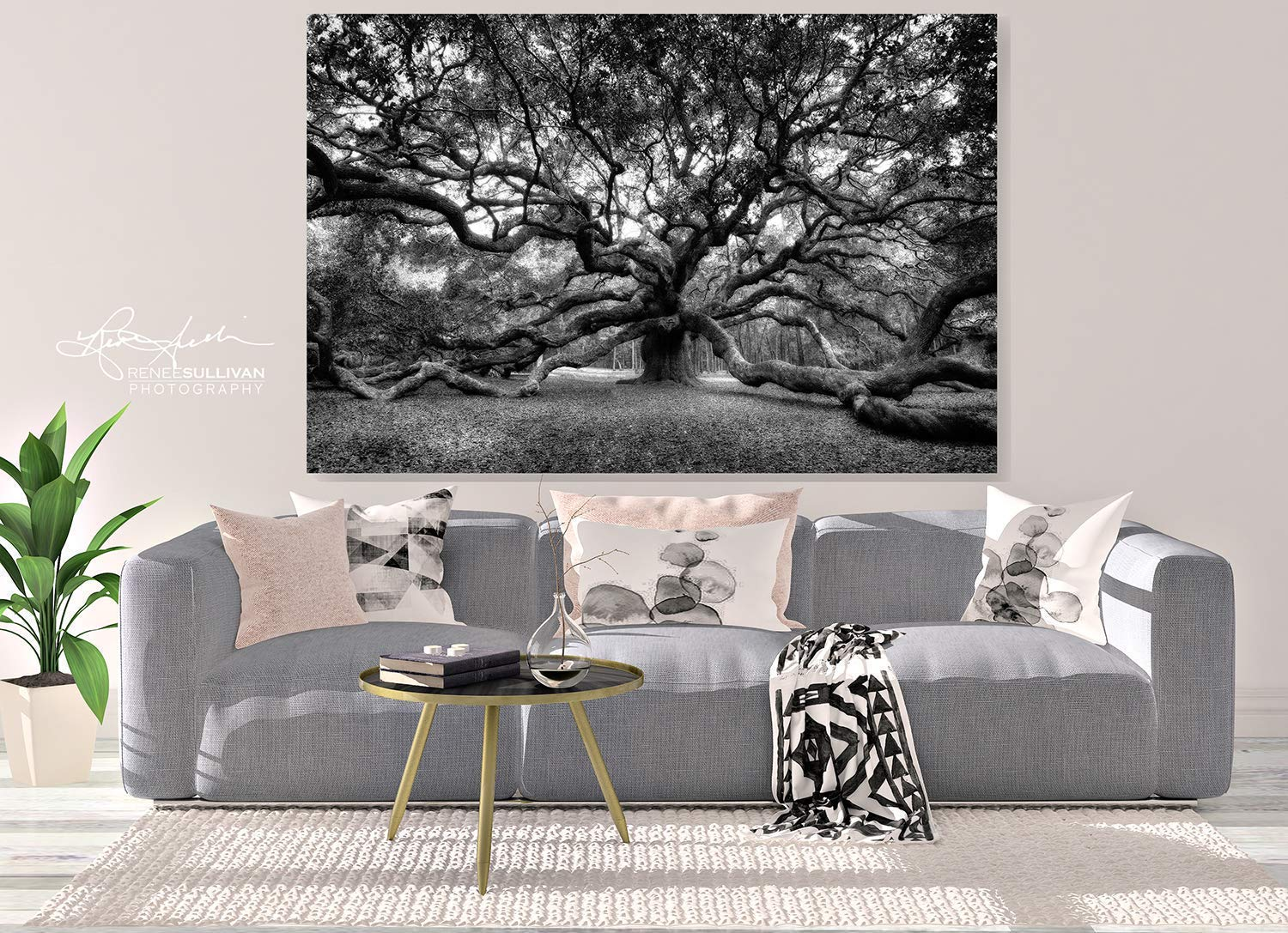 Angel oak charleston sc canvas or metal ready to hang black white fine art photography live oak tree small to extra large wall art 7x5 to 72x48 inches