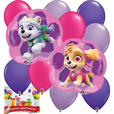 Paw Patrol Girls Party Supplies Skye and Everest Balloon Decoration Bundle: Toys & Games