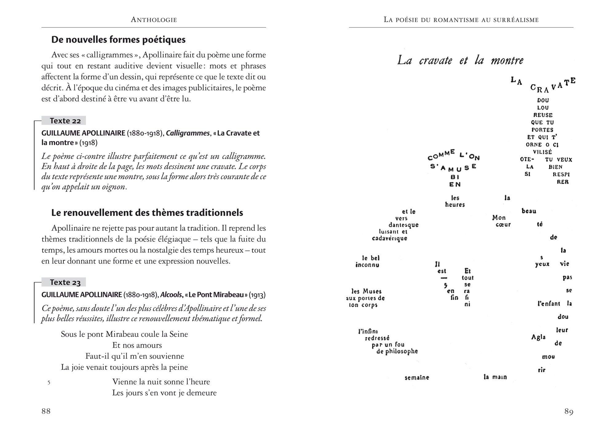 Pauca Meae Livre Iv Des Contemplations Suivi Dun Parcours