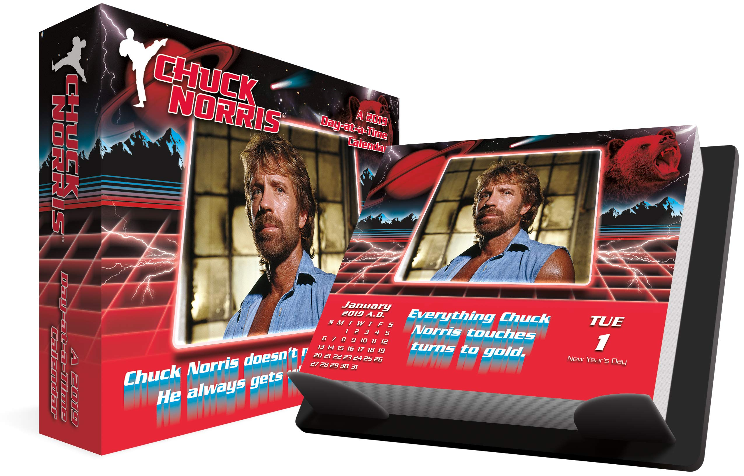 2019 chuck norris day at a time calendar