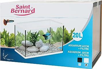 SAINT BERNARD® - Acuario con Filtro para acuarofilia - 40 cm. - 20 litros: Amazon.es: Productos para mascotas