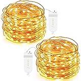 Oak Leaf 101030 30-LED Fairy String Lights, Battery Operated, Warm White, Set of 2
