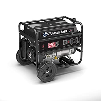 Briggs & Stratton 30660 Gas Powered Portable Generator with