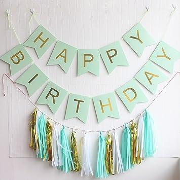 Amazoncom Mint Birthday Party Decoration Kit Happy Birthday