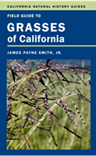Manual of the flowering plants of california: willis l. Jepson.