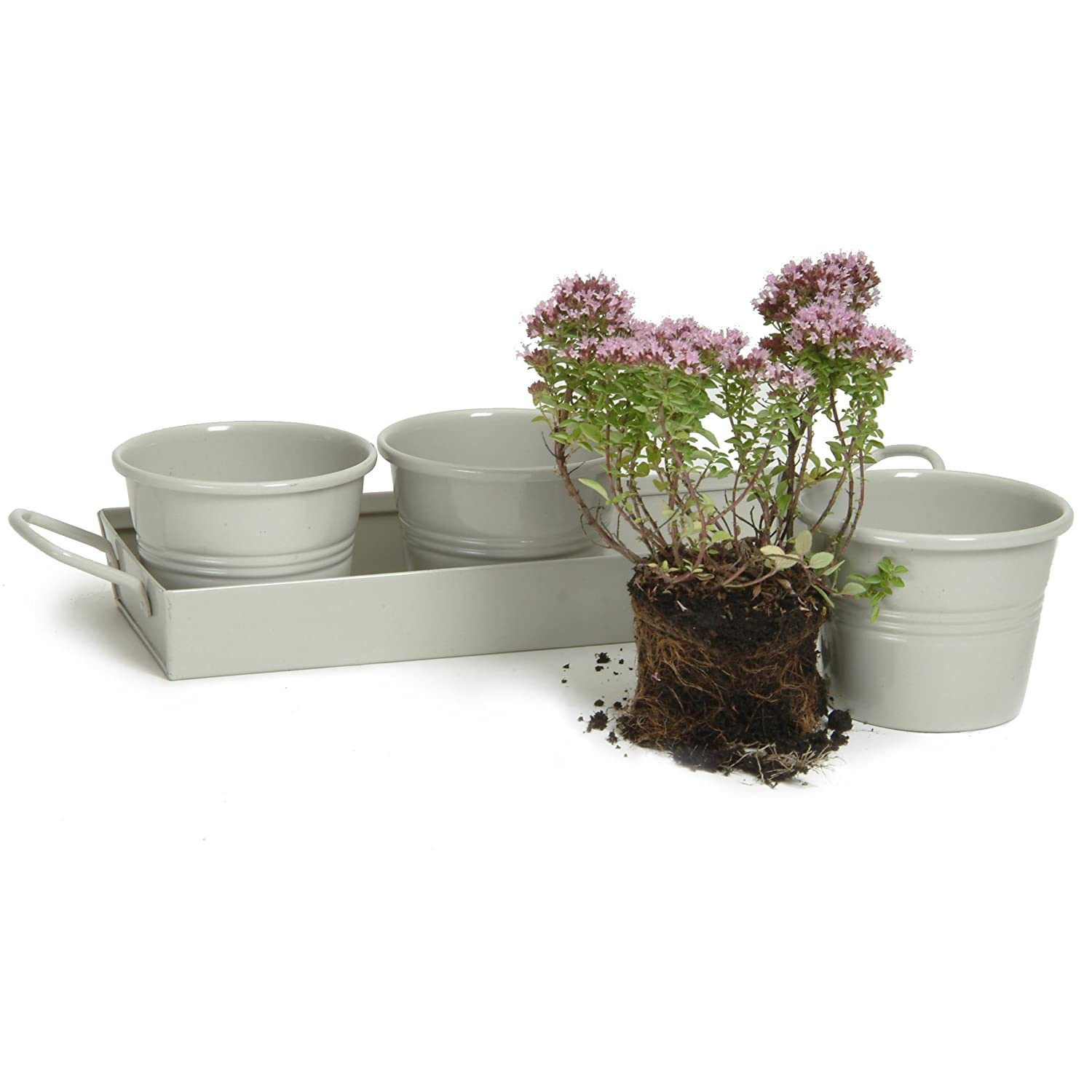 Kitchen Herb Pots Wooden Planter Window Sill Garden Plant