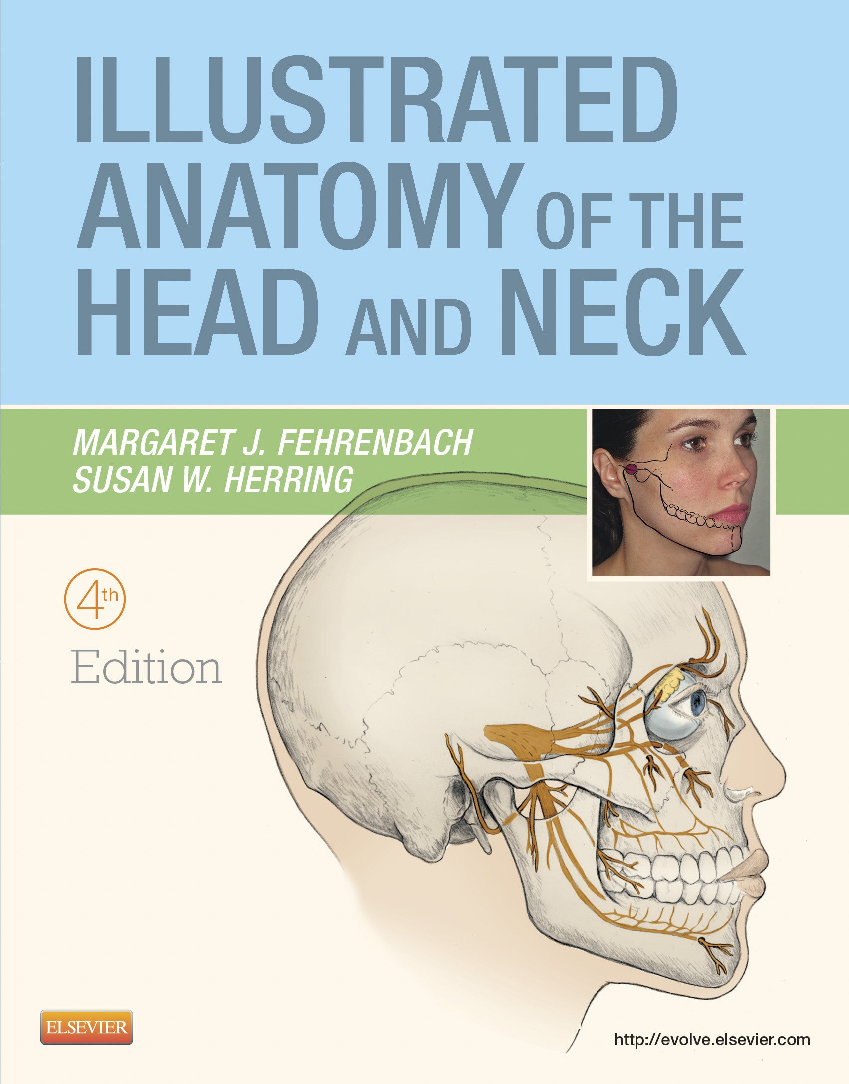 Buy Illustrated Anatomy of the Head and Neck (.Net Developers Series ...