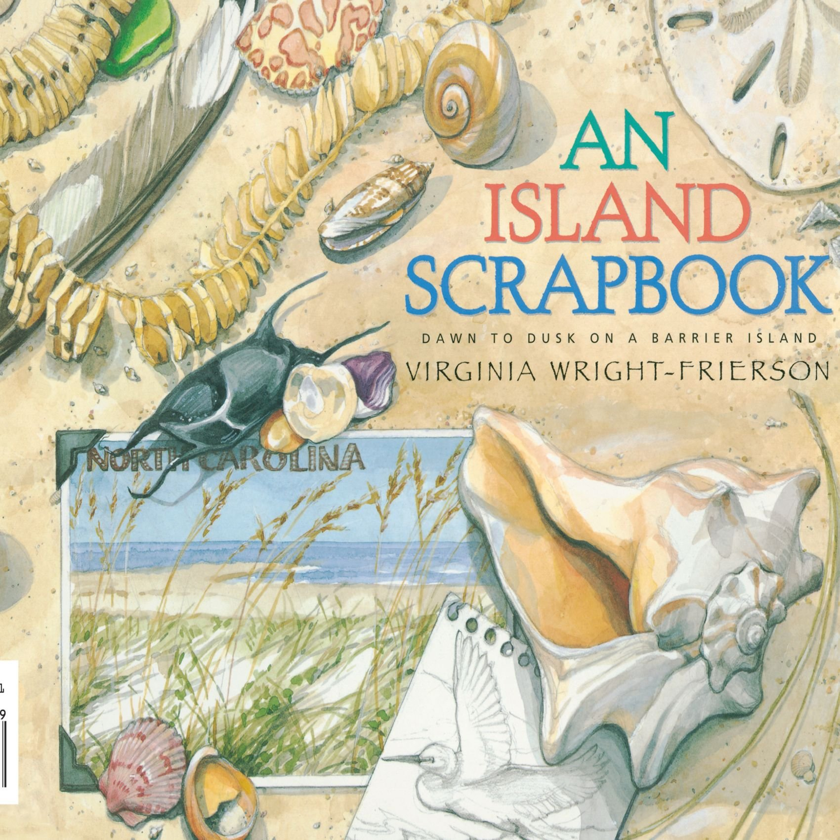 An Island Scrapbook: Dawn to Dusk on a Barrier Island