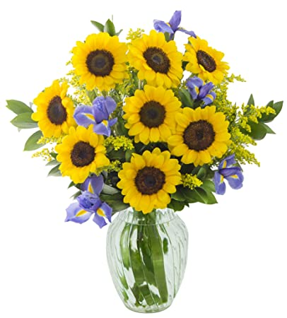Sunny Iris Bouquet: 8 Sunflowers, 5 Blue Iris, 5 Yellow Solidago Asters and  Lush Greens with Vase -