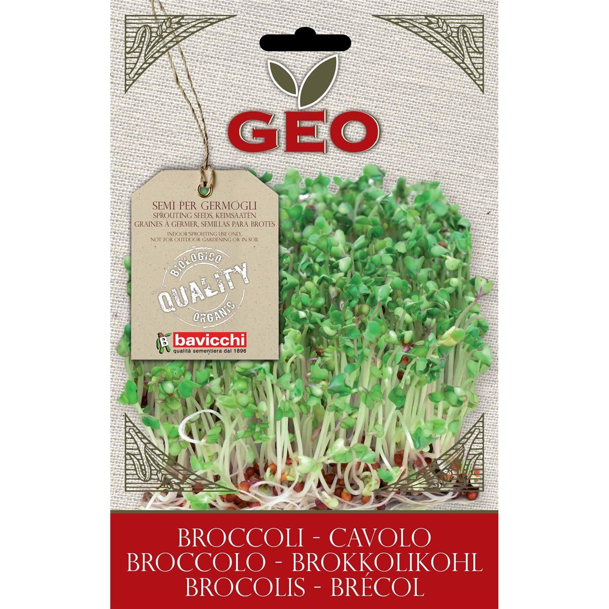 Geo VCB0503