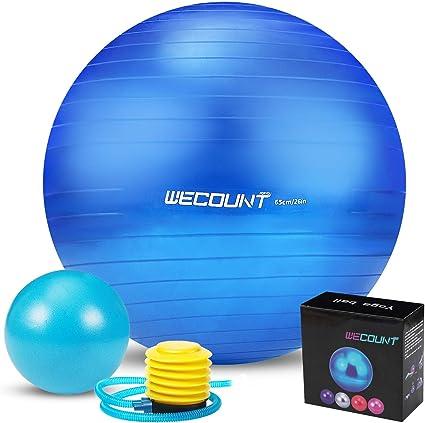 65 cm Balance Ball with Pump Fitness Exercise Pilates Gym Yoga Birthing