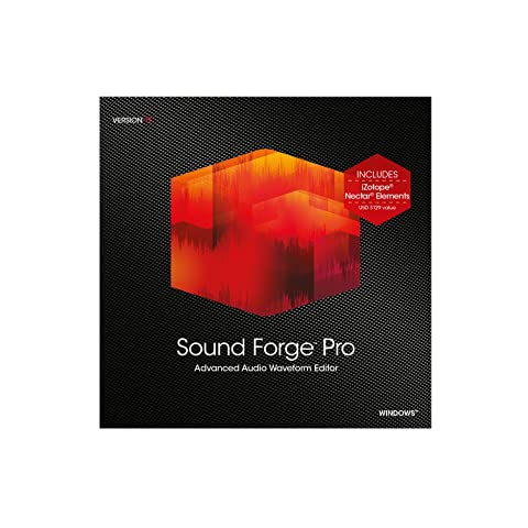 Sound Forge Pro 11 [Download] (Sony Sound Forge 11)