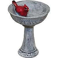 G & F MiniGardenn 10027 Fairy Garden Miniature, Cardinal Birdbath Pick