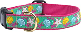 product image for Up Country Reef Dog Collar MD