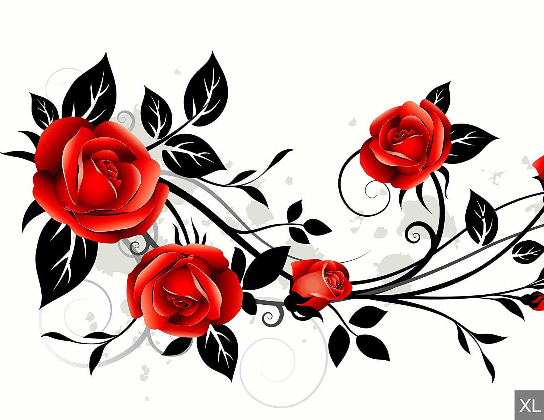 Tapete Tapeten Fototapeten blumen FDB149 Fototapete Vlies Rankende Rose