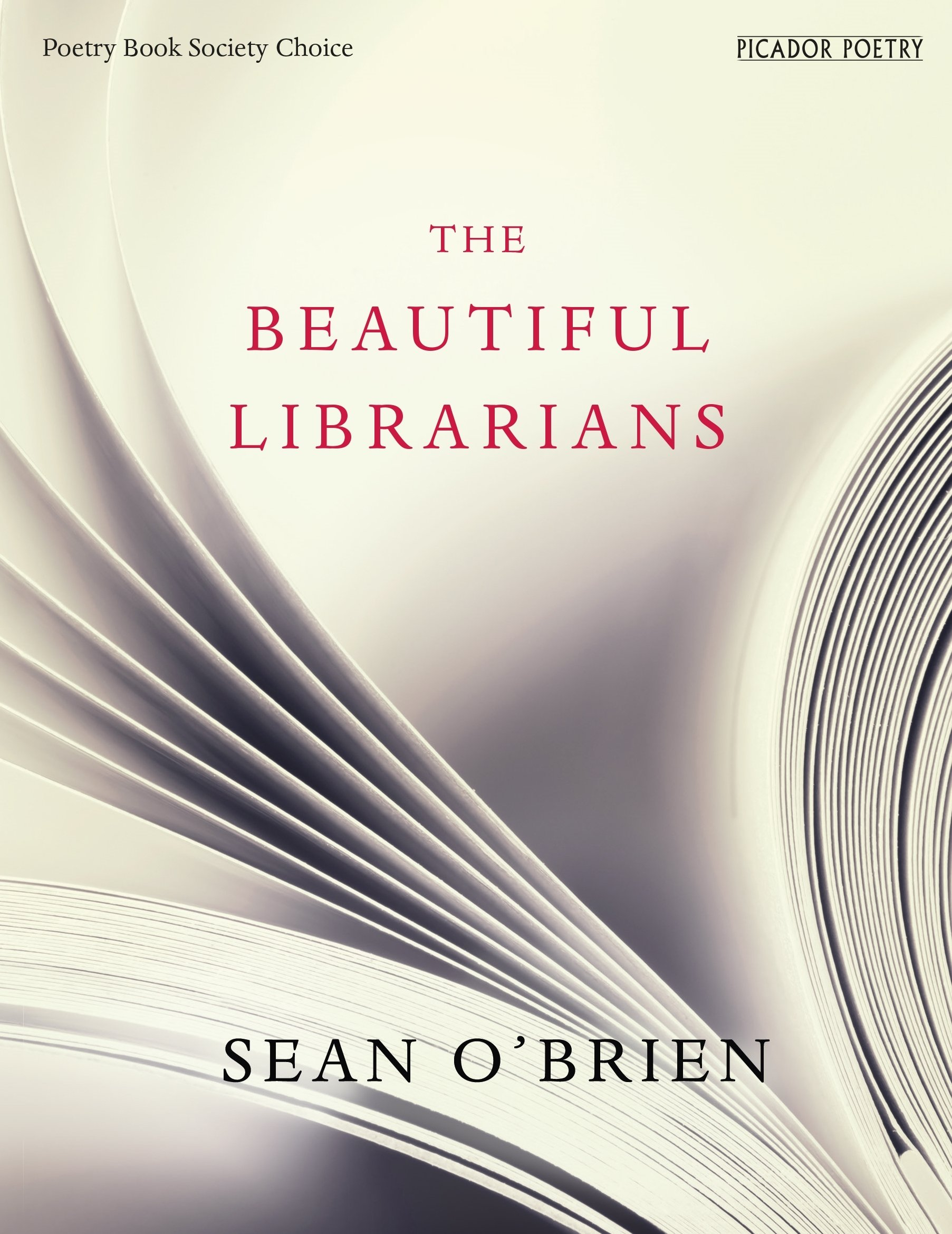 The Beautiful Librarians pdf