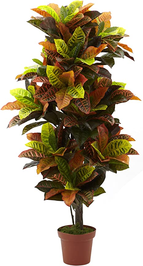 Nearly Natural 6721 Real Touch Croton Artificial Plant 56 Inch Green Orange Amazon Ca Home Kitchen