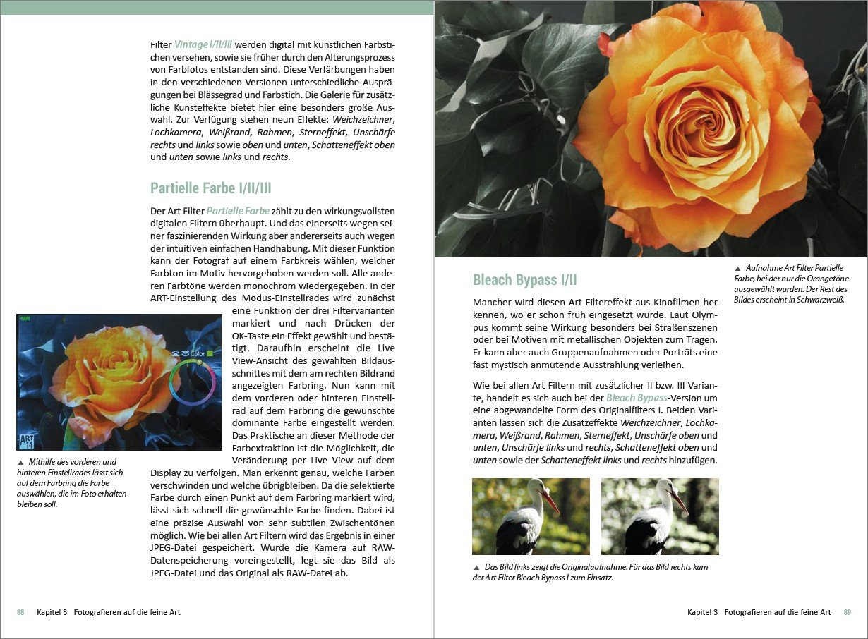 Nett Rechtser Rahmen Fotografie Zeitgenössisch - Benutzerdefinierte ...