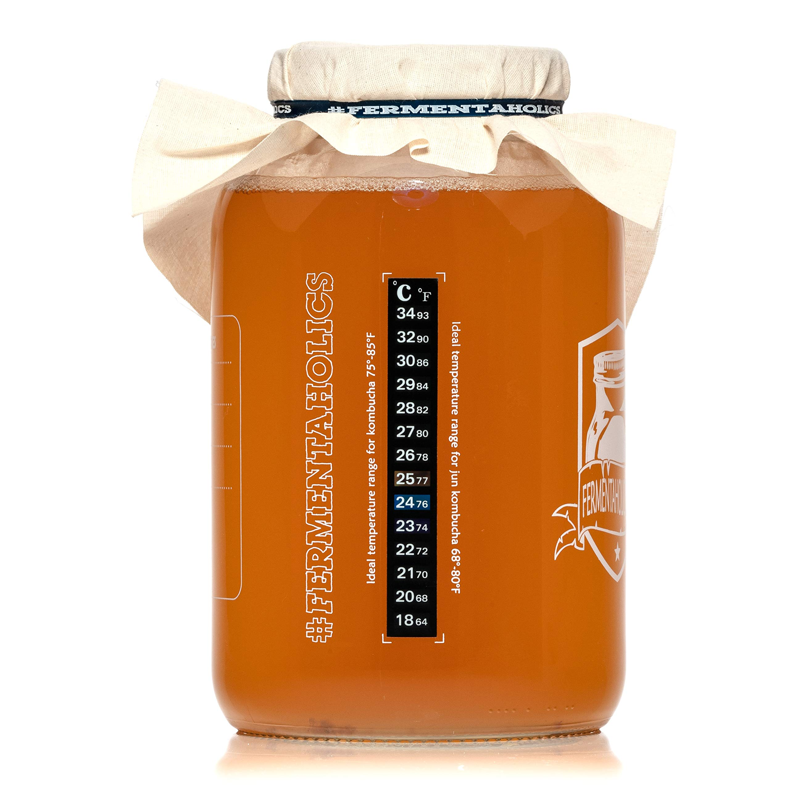 Fermentaholics Kombucha SCOBY (starter culture) + 1-Gallon Glass Fermenting Jar with Breathable Cover + Rubber Band + Adhesive Thermometer - Brew kombucha at Home - Detailed Instructions Included by Fermentaholics (Image #5)