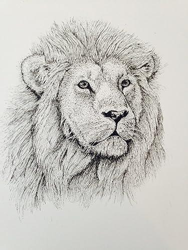 amazon com the lion pen and ink original decorative art print