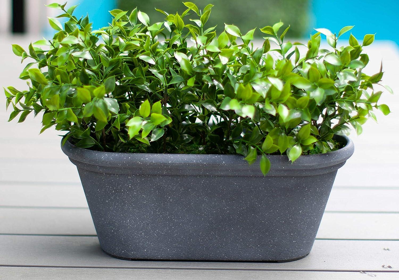 Weathered Grey Algreen 49239 Oval Windowbox Planter