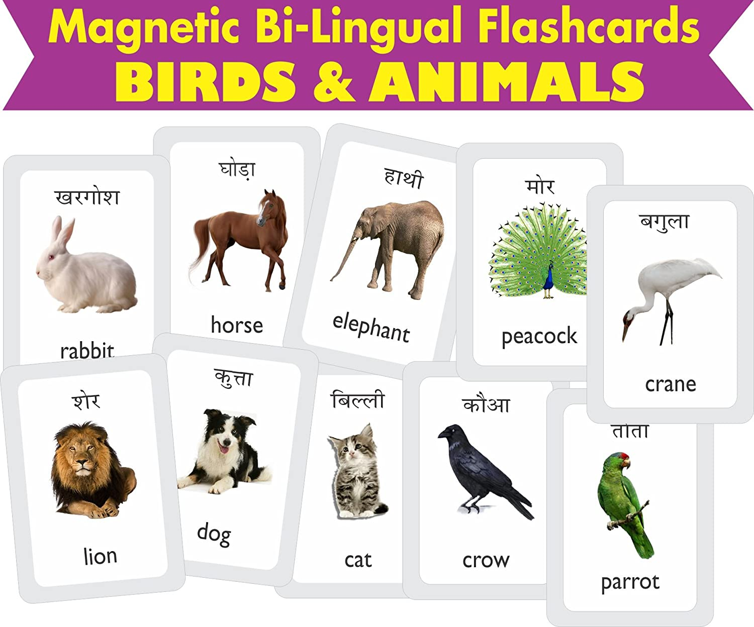 Buy Mfm Toys Birds Animals Bilingual Hindi English Magnetic Flashcards Online At Low Prices In India Amazon In