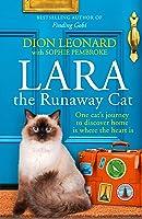 Lara The Runaway Cat: One Cat's Journey To