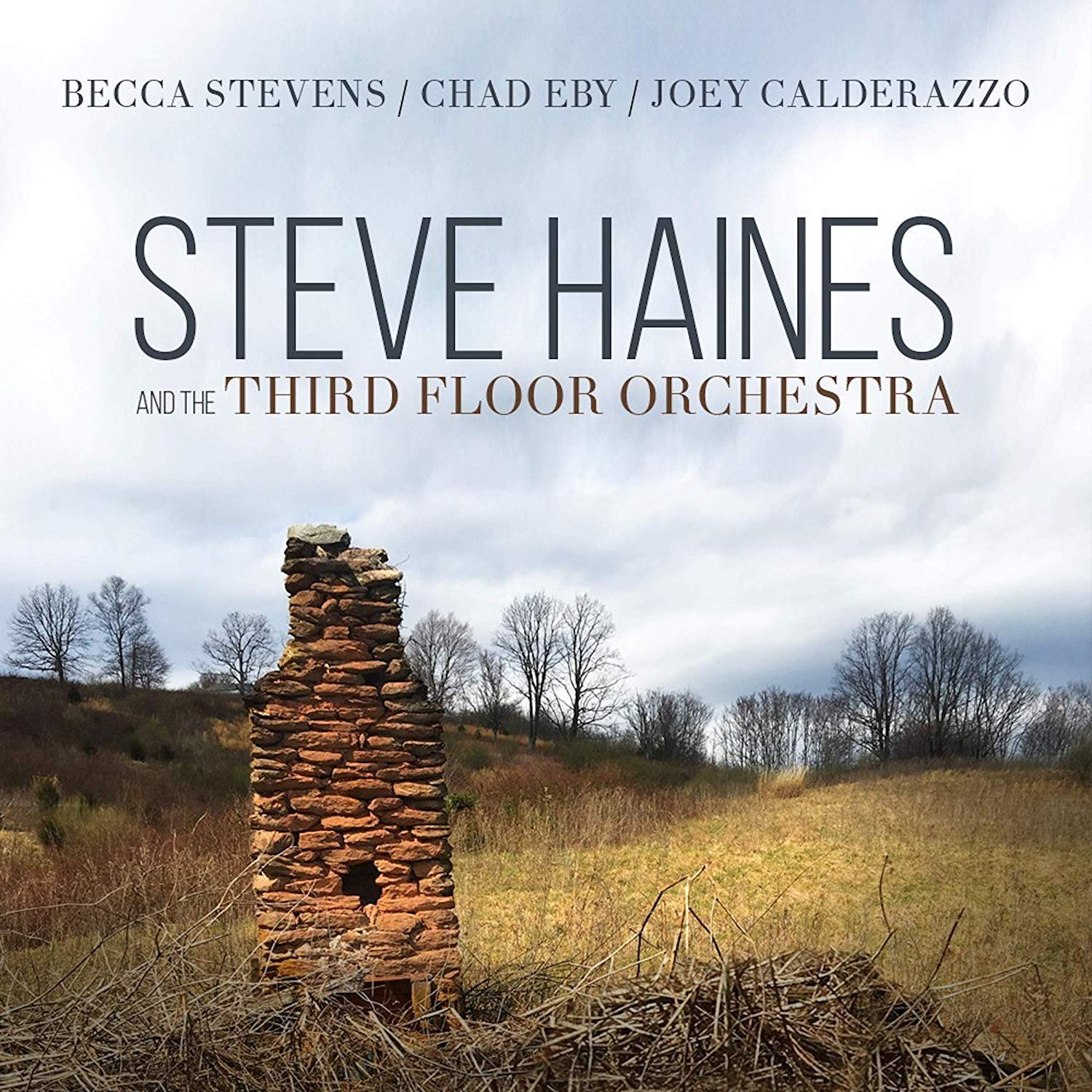 Steve Haines and the Third Floor Orchestra – Steve Haines and the Third Floor Orchestra