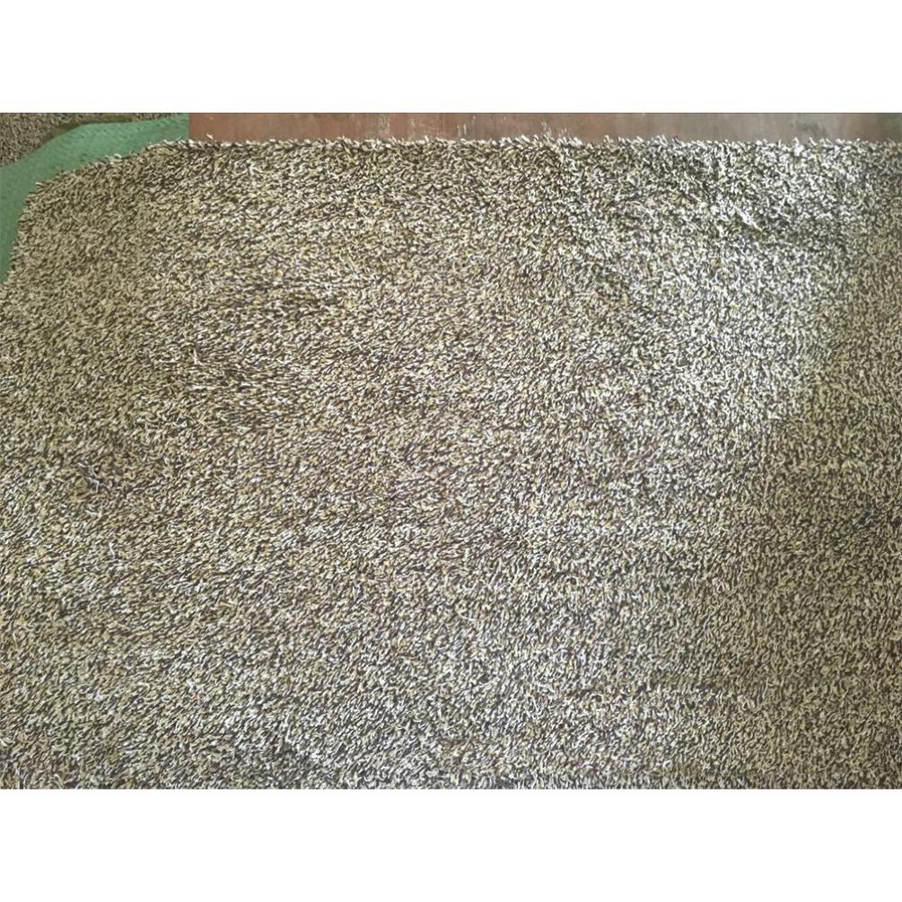 Amazon.com : Clean Step Mat Super Absorbent Doormat As Seen On Tv ...