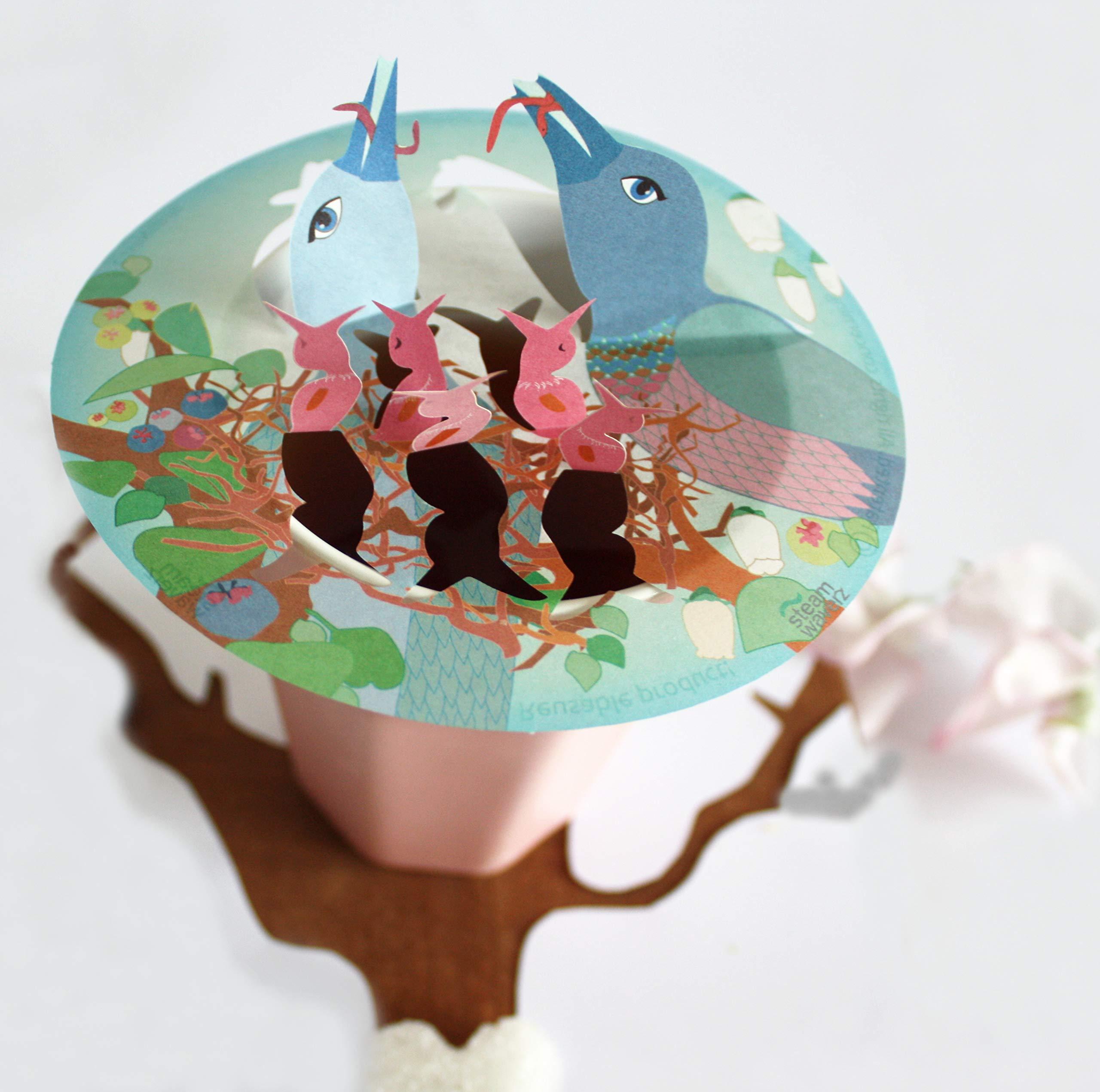 STEAM WAVERZ BIRDS NEST PINK