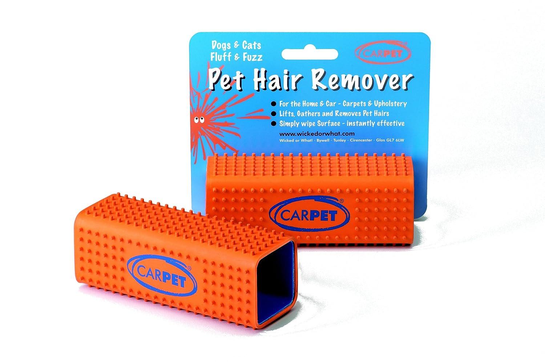 CarPET - Brosse épilatoire Pour Soulever, Ramasser, Enlever les poils d'animaux domestiques Lot de 2 PET2