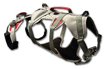 Klettergurt Hund : Ruffwear m double back harness hunde abseilgeschirr
