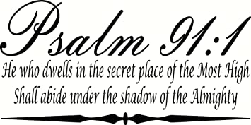 Psalm 91:1 He Who Dwells In The Secret Place... Bible Verse Part 67