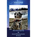 Visitors: Short Story Mystery