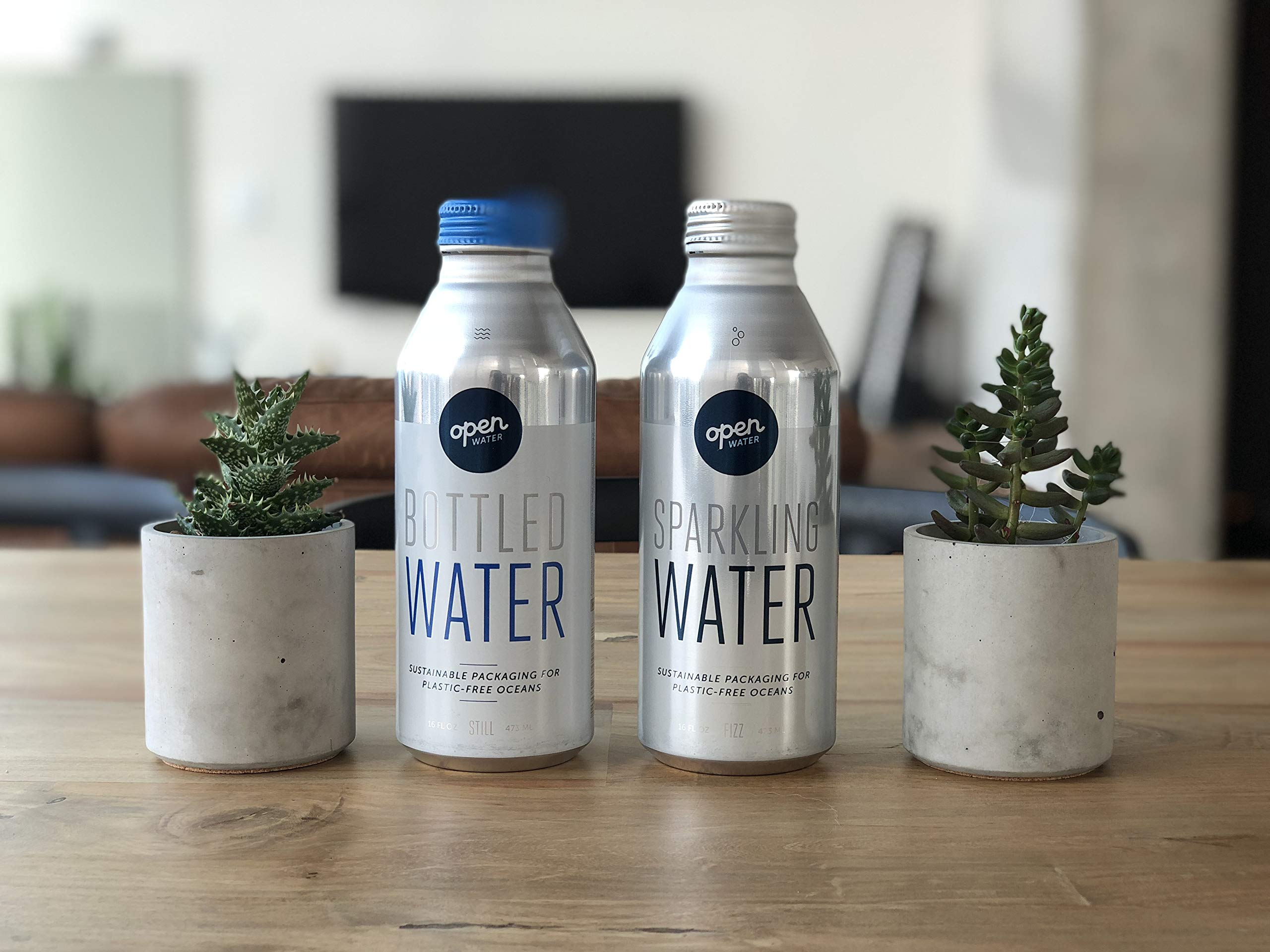 Open Water - Sparkling Bottled Drinking Water in 16-ounce Aluminum Bottles (2 cases of 12 units, 24 bottles total - Sparkling Water)