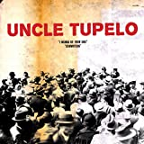 Uncle Tupelo Still Feel Gone Amazon Com Music