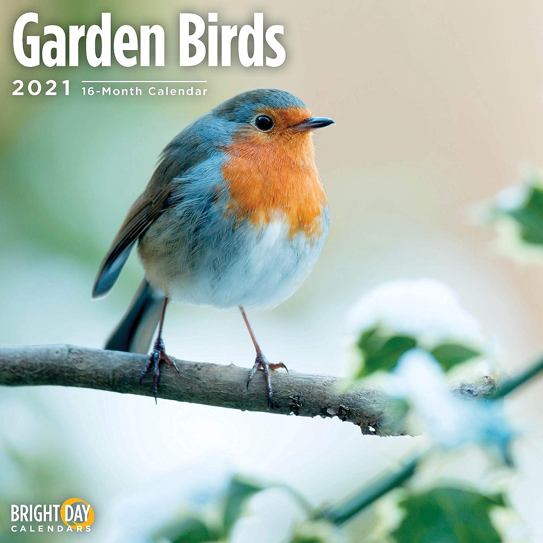 2021 Garden Birds Wall Calendar by Bright Day, 12 x 12 Inch, Cute Small Tiny Animals
