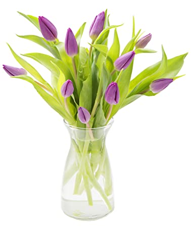 Amazon 10 Fresh Cut Purple Tulips From Holland With Vase By
