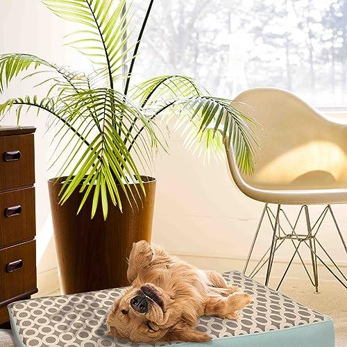 EZ Living Home P203M36BL Orbits Reversible Memory Foam Pillow Bed