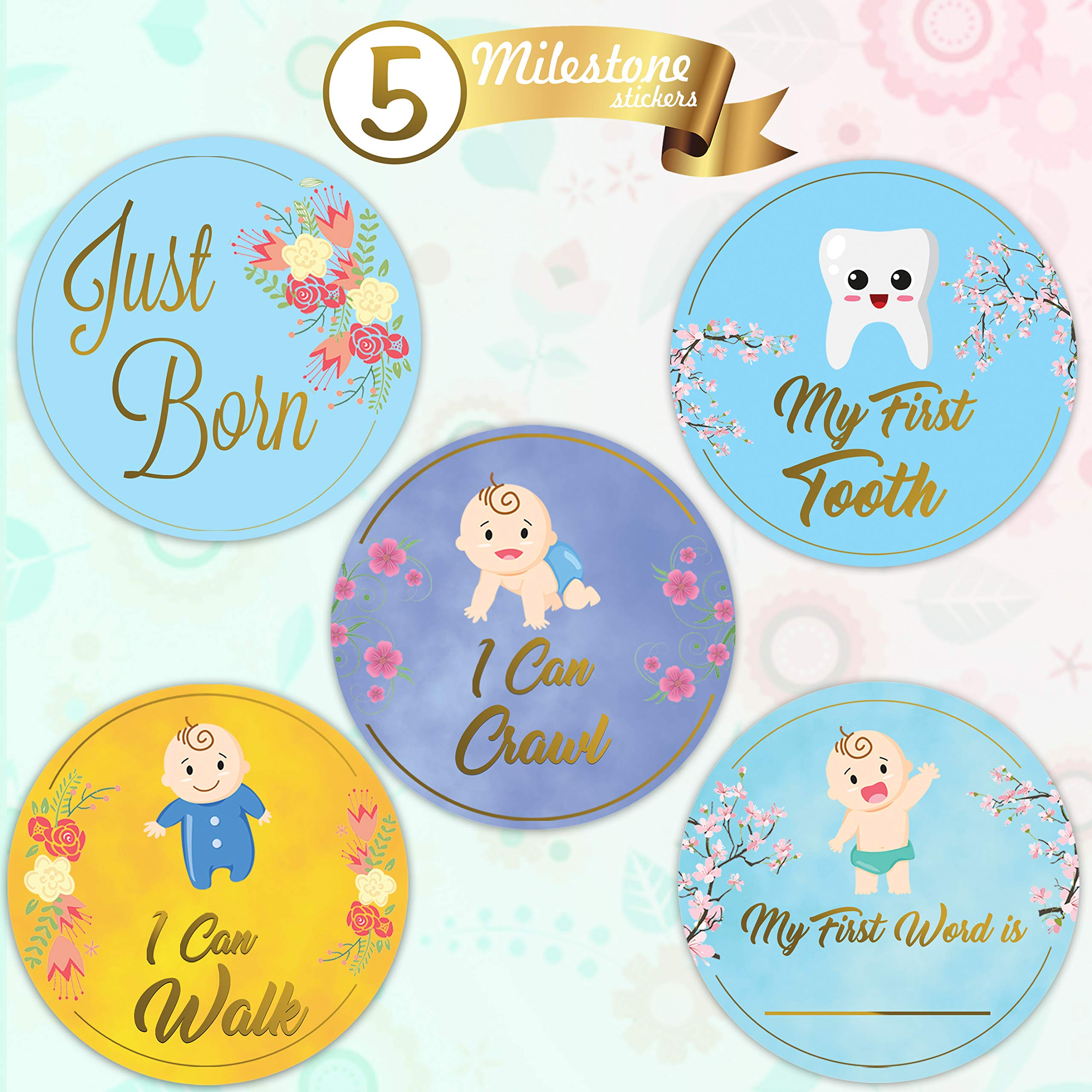 Baby Monthly Stickers-24 Floral Milestone Stickers with