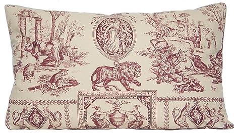 Amazon.com: French diseño tradicional almohada Throw Caso ...