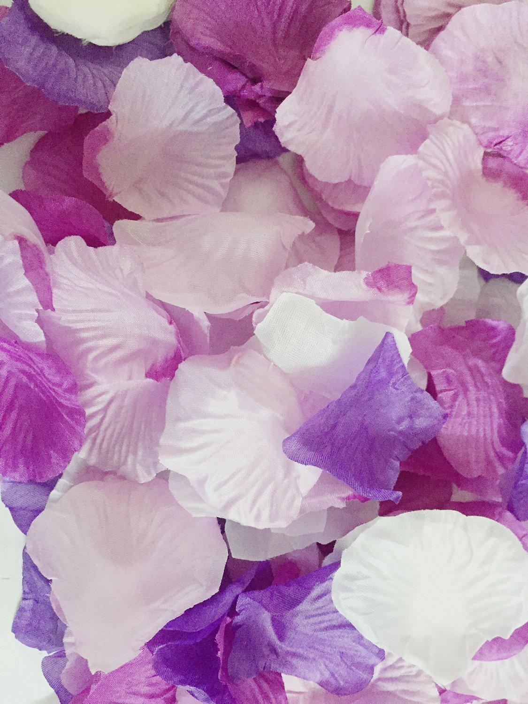 Beenlen 1000pc Silk Rose Petals Wedding Flowers Favors (pink serise)