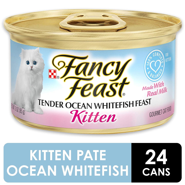 Amazon.com: Comida húmeda Purina Fancy Feast para ...