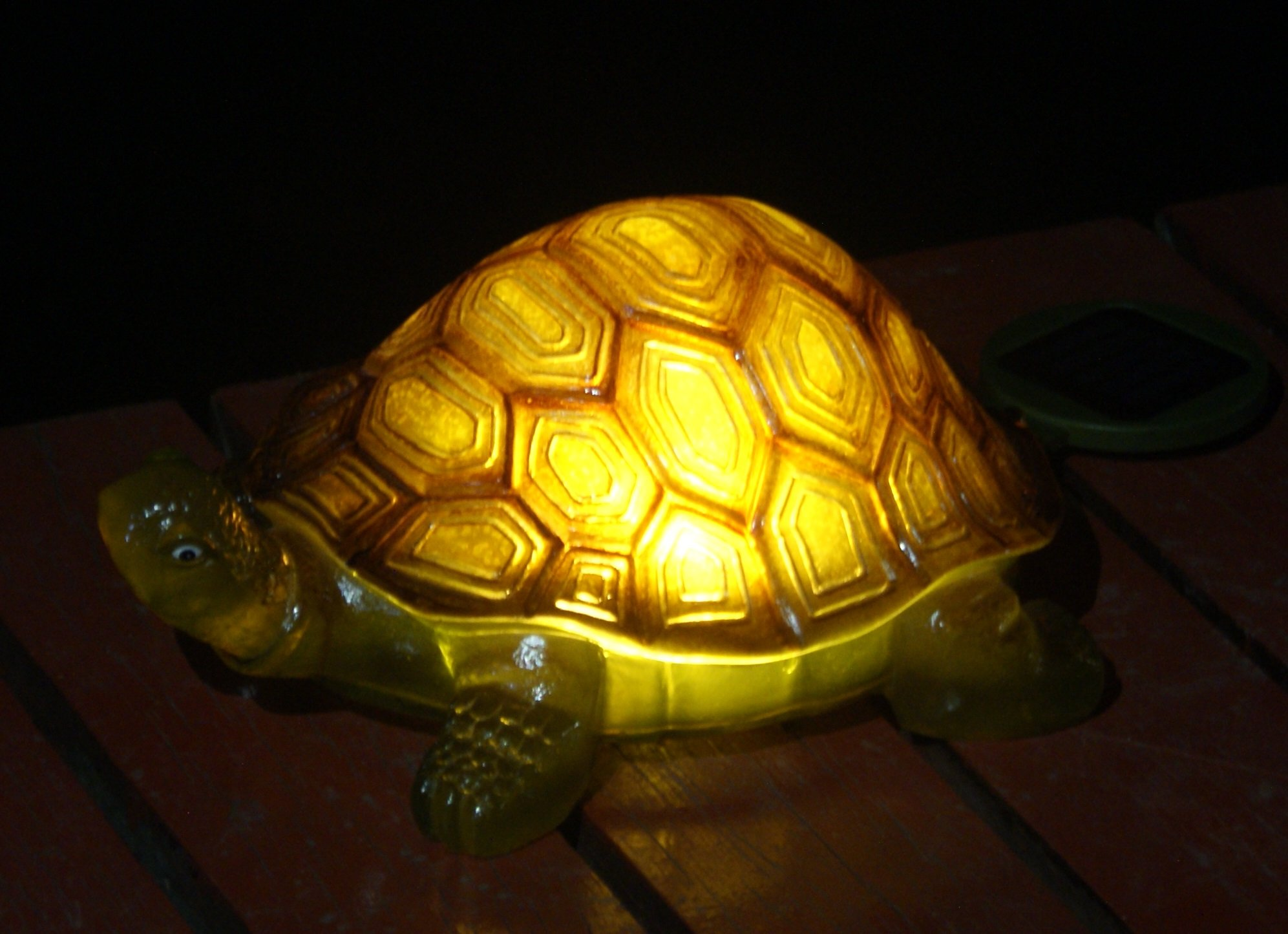 TIAAN 157808 Solar Powered LED Light Garden Decor,Turtle with LED Glowing Shell
