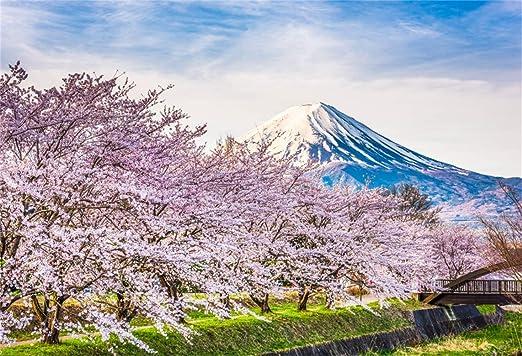 SZZWY 8x6.5ft Spring Japanese Famous Scenic Spot Scenic Vinyl Photography Background Blooming Sakura Cherry Blossom Trees Canal Hanami Remote Snowy Mount Fuji Backdrop Landscape Wallpaper Studio