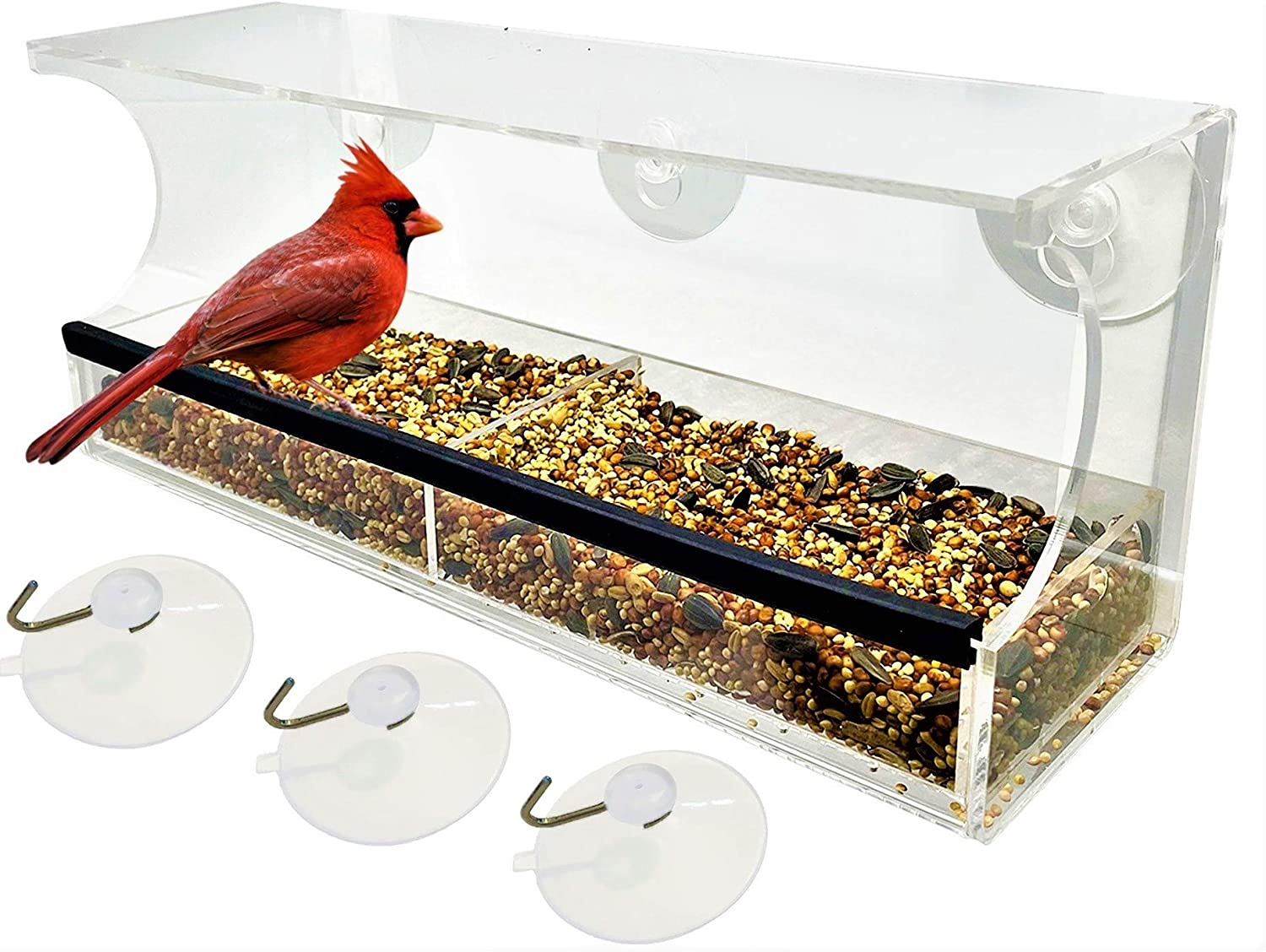 Crazy Frog Studio - Premium Window Wild Bird Feeder with Transparent Covered Feed Area, Drainage Holes, Extra-Strong Suction Cups, Removable Food Tray, Comfortable Rubber Perch