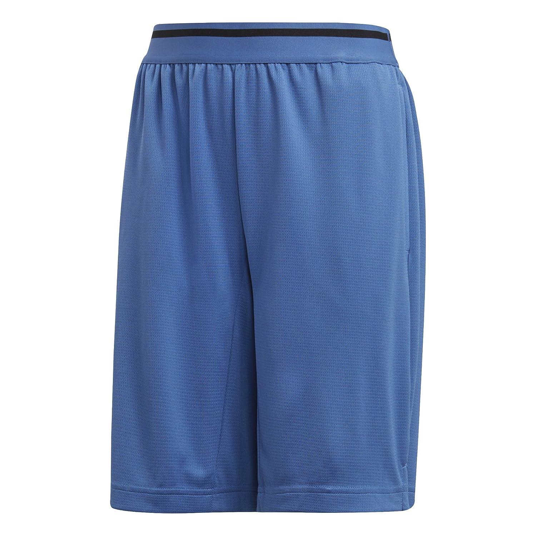 adidas Boy's Training Cool Shorts, Trace Royal/Black, L/G adidas Canada Limited Parent Code - SPORTS CF7102