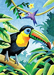 Royal & Langnickel Mini Colour Pencil By Number Kit: 5x7 Tropical Birds