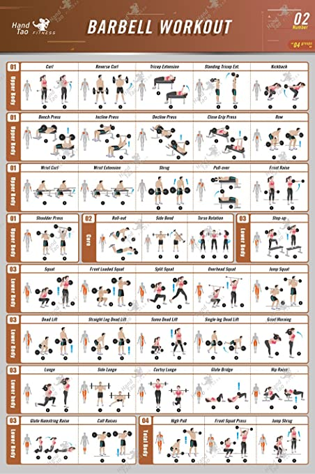 amazon com barbell workout exercise poster bodybuilding guide