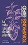 La vida secreta de las plantas (Spanish Edition)